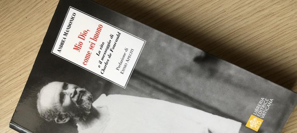 Recensione al libro di Andrea Mandonico